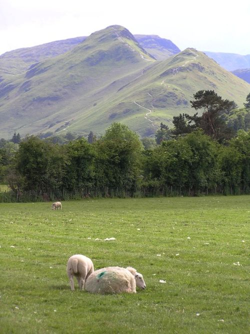 Looking towards Cat Bells
