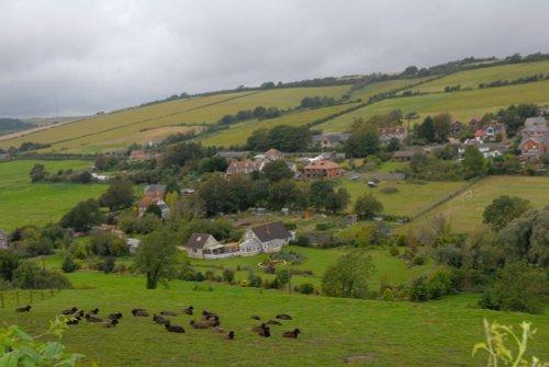 Countryside near Carisbrooke Castle IOW
