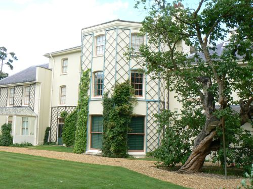 Down House &  Mulberry Tree