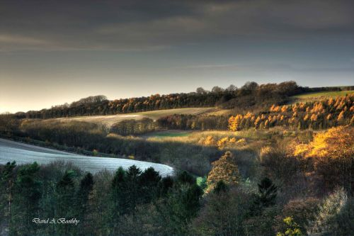 Weedley Near Soth Cave, East Riding of Yorkshire