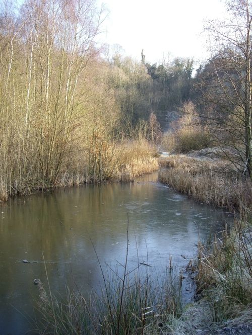 Doultons Clay Pit in Saltwells Nature Reserve