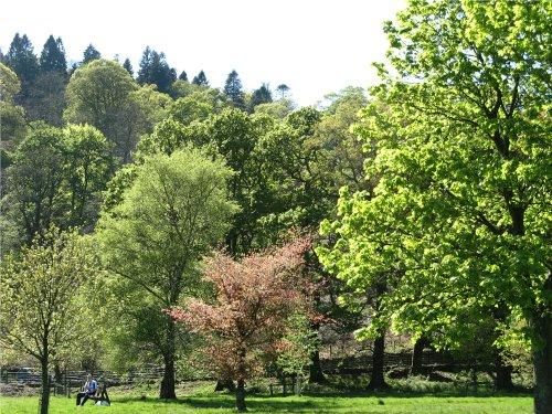Glenridding, in the English Lake District.