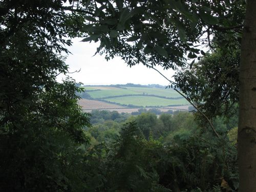 A walk in Shotover Country Park, Oxford