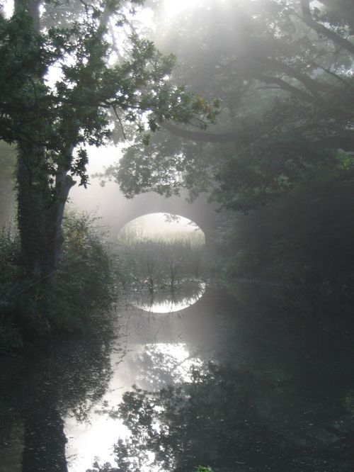 Basingstoke Canal, Up Nately