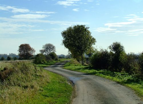 Winding lane at Ellerker