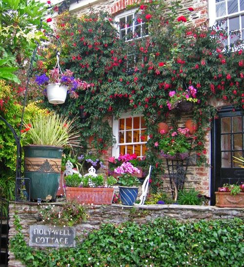Cottage Garden in St.Mawes, Cornwall