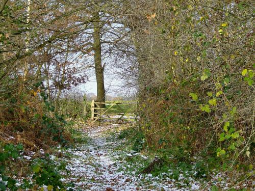 The entrance to North Cliffe woods nature reserve