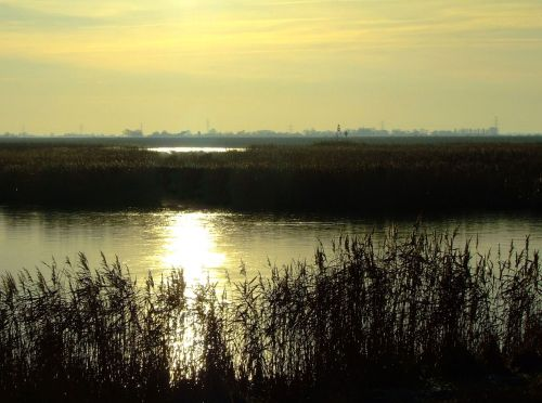 Low winter sunlight at Faxfleet