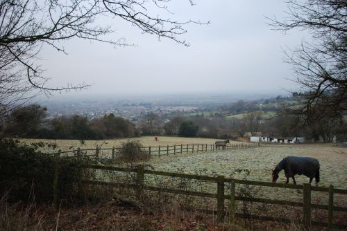 View from Cleeve Hill New Years Day 2009