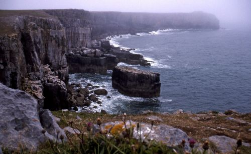 St Govans Head Coastline.