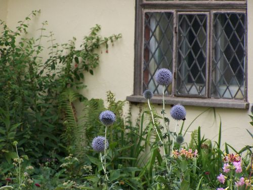 By the window of Willy Lotts cottage