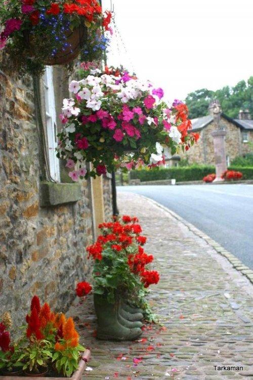 Flowers in the village of Slaidburn
