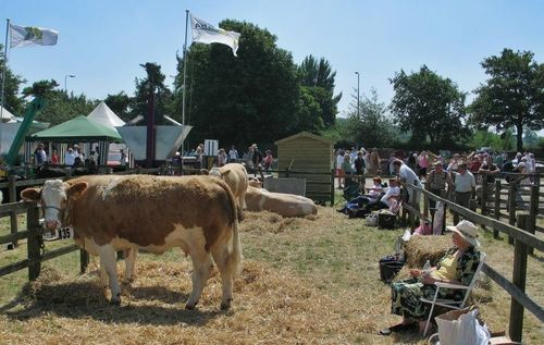 Driffield Show0016