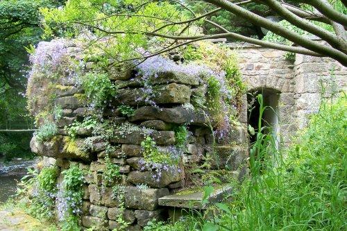 Garden at Mill Barn Samlesbury