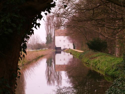 Winter at Lode Mill