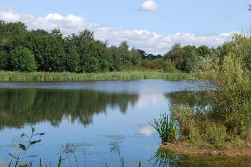 Priory Water