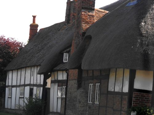 Amazing thatched buildings