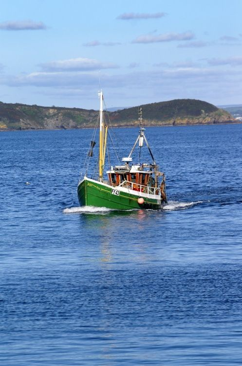Fishing boat coming into the harbour.