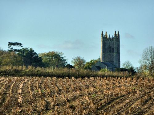 Redenhall Church Tower from across the fields