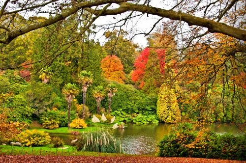 Autumn in Sheffield Park