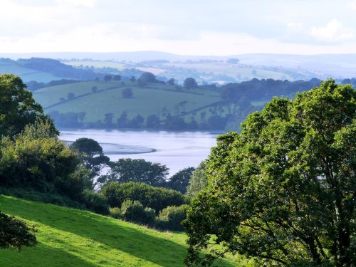 View over the River Dart