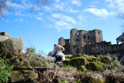 Monty at the Castle!