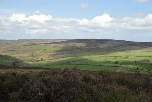 On the Moors 3