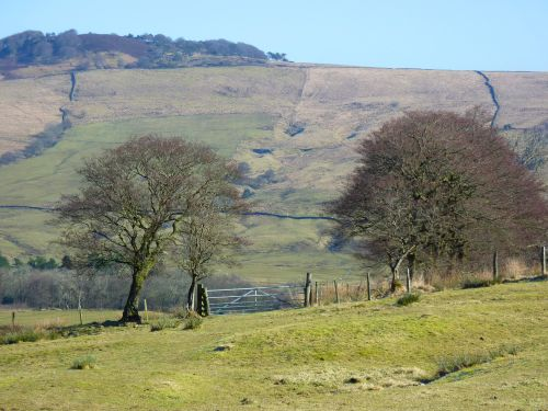 Whitewell