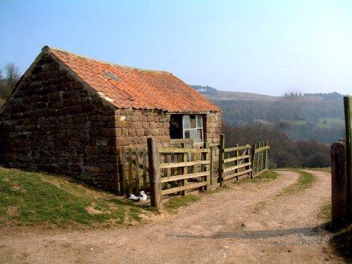 Rosedale Barn