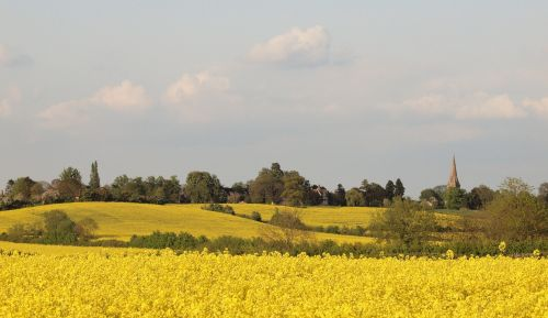 View towards Steeple Claydon, Bucks