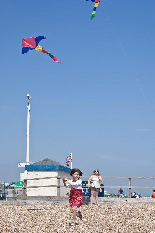 Free as a bird flying a kite