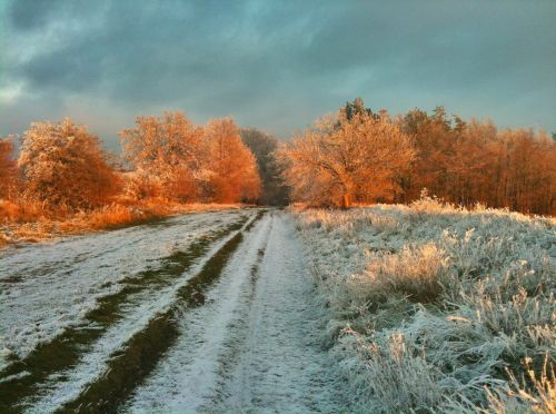 The Ridgeway - East Hendred