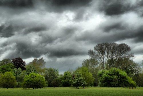 Oxford Univerity Parks