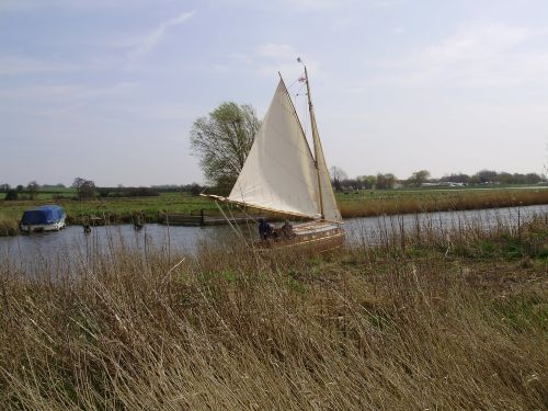 Sailing in the marshes