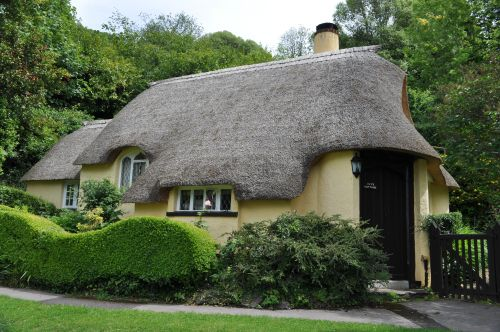 Ivy's Cottage