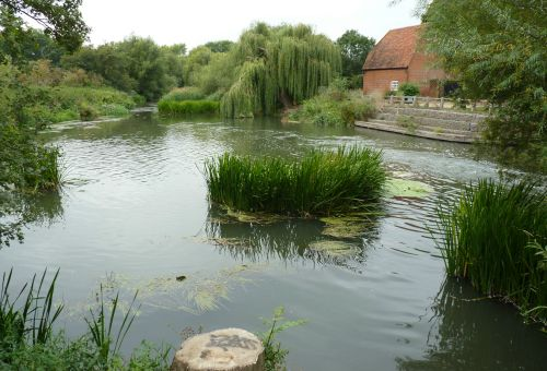 The Mill Pond For Cobham Mill