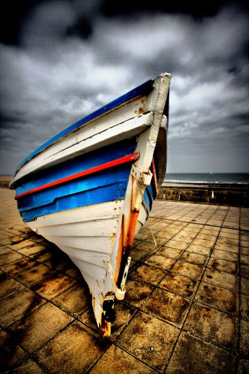 The Old Sea Salt