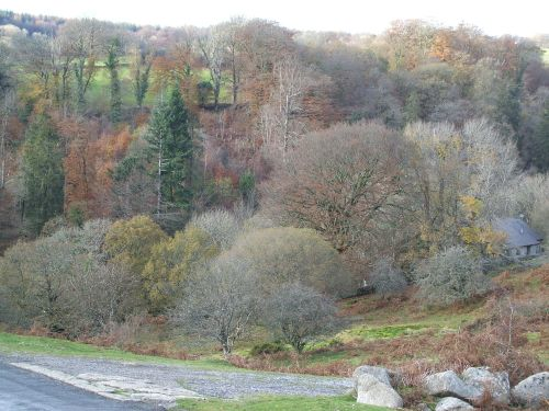 Dartmeet in Autumn