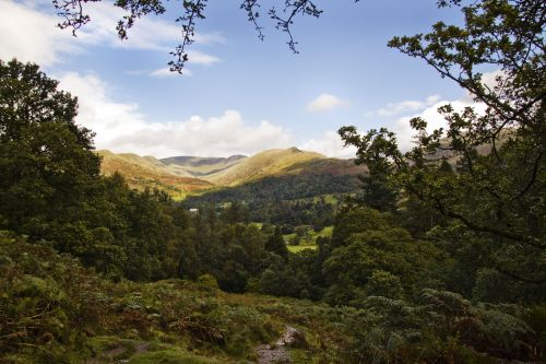Fairfield Horseshoe 1