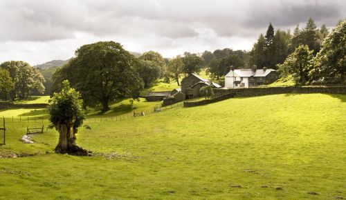 Farm close to Loughrigg Tarn and Grasmere