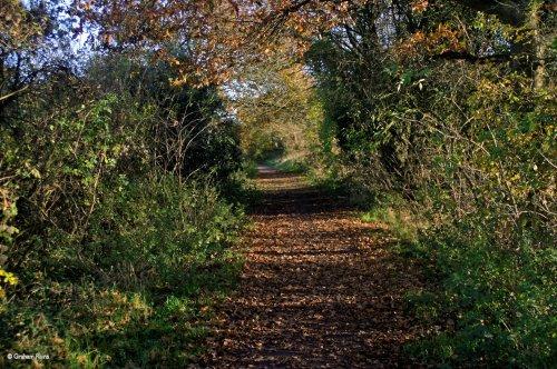 The North Dorset Trailway