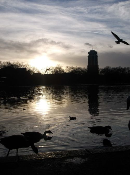 Sunset over the Lake,Hyde Park,London