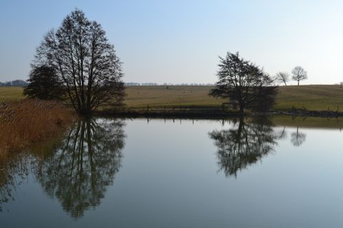 Fawsley lake reflections