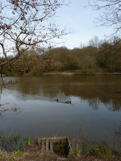 The Stew Pond