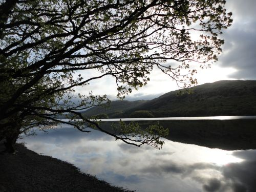 Coniston Water in the early morning light.