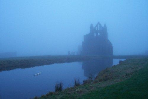 Dawn morning, Whitby Abbey