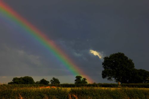 Pot of gold over Sheepy Magna
