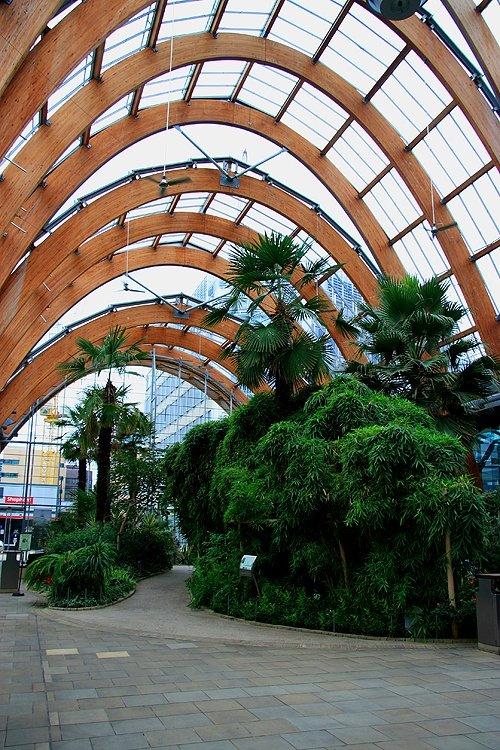 Winter Gardens Sheffield