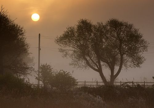 Misty Sunrise at Keyhaven