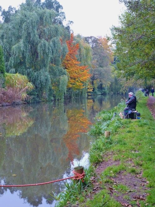 The Fisherman in the Fall